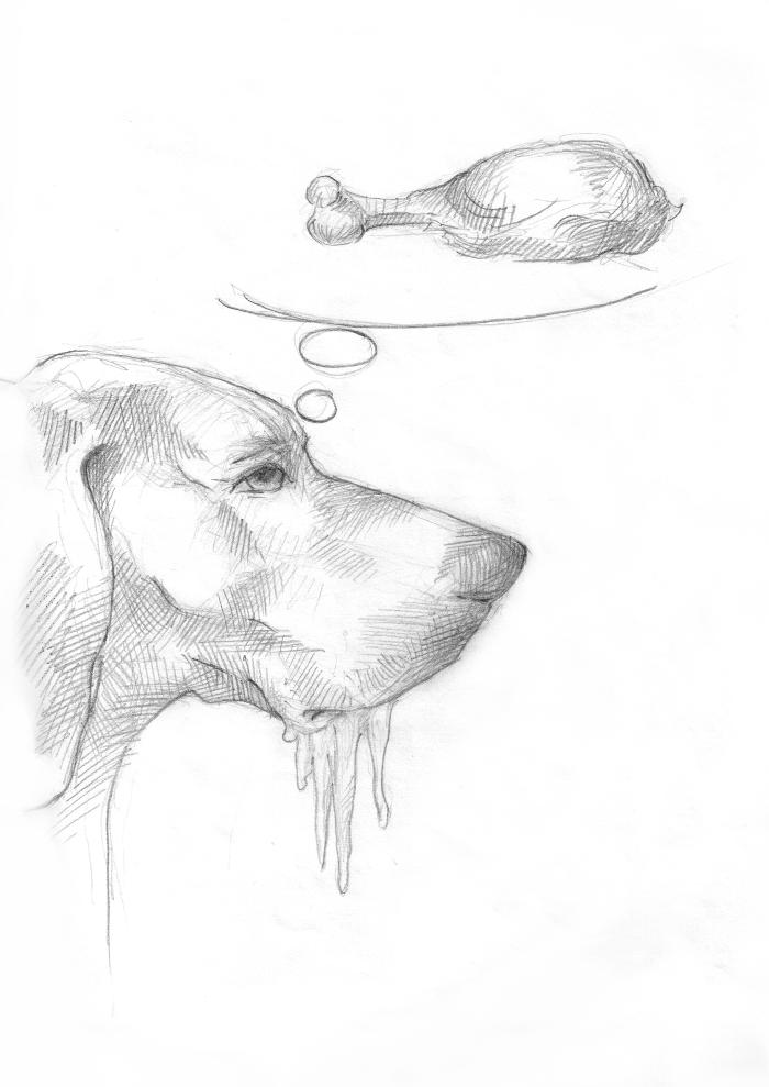 pes_v_zime_m